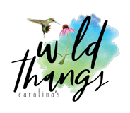 Wild Thangs Charlotte NC