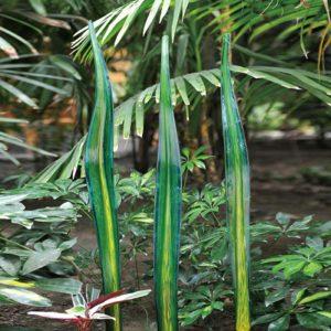 G030-AY-3 Water Grass – Aqua / Yellow