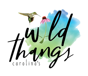 Wild Thangs Charlotte NC